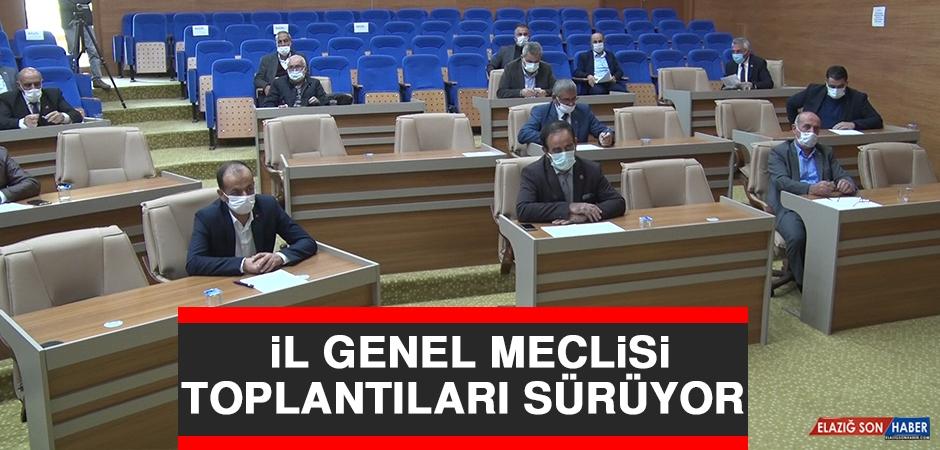 İl Genel Meclisi Toplantıları Sürüyor