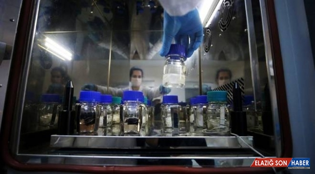 Kimya sektörünün ekim ayı ihracatı 1,7 milyar dolar