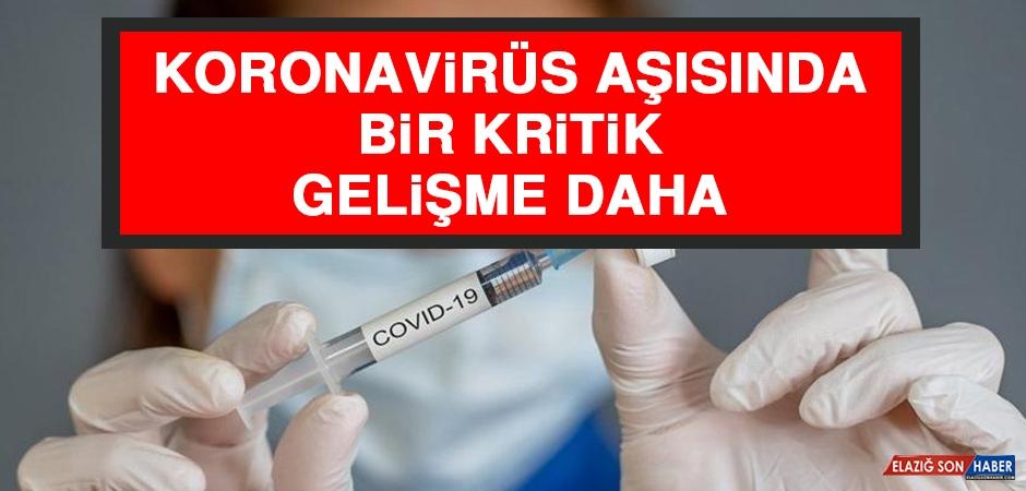 Koronavirüs Aşısında Bir Kritik Gelişme Daha