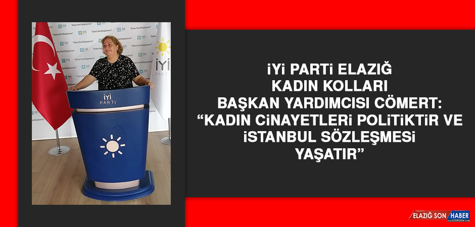 """Mesude Cömert: """"Kadın cinayetleri politiktir ve İstanbul Sözleşmesi yaşatır"""""""