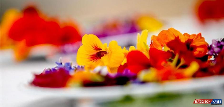 Pandemide Minyatür Sebze ve Yenilebilir Çiçeklere Rağbet Arttı