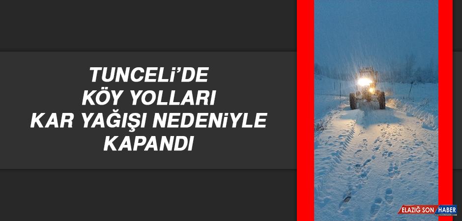 Tunceli'de Köy Yolları Kar Yağışı Nedeniyle Kapandı