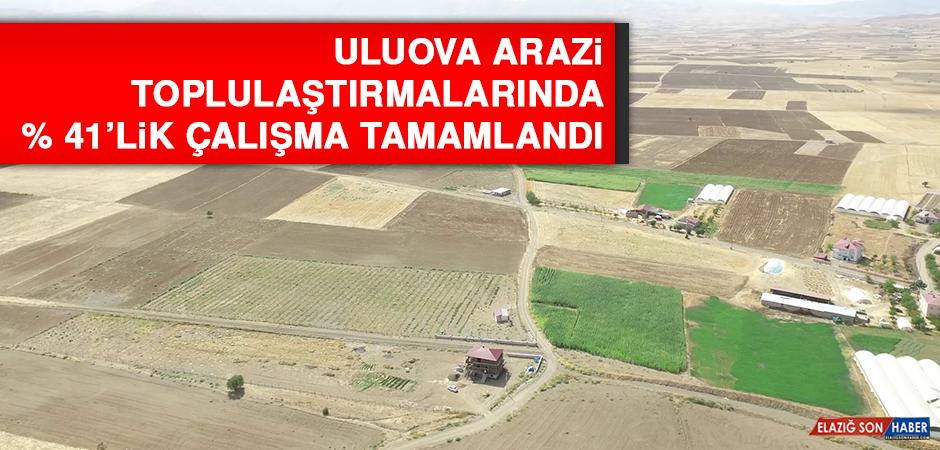 Uluova Arazi Toplulaştırmalarında % 41'lik Çalışma Tamamlandı