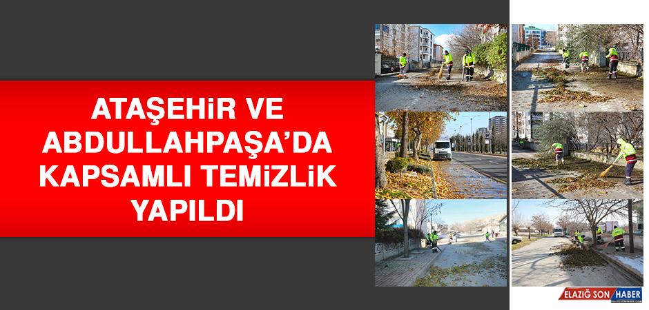 Ataşehir Ve Abdullahpaşa'da Kapsamlı Temizlik Yapıldı