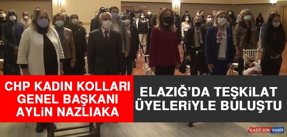 CHP Kadın Kolları Genel Başkanı Nazlıaka Teşkilat Üyeleriyle Buluştu