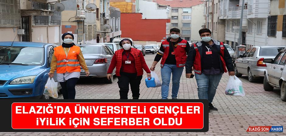 Elazığ'da Üniversiteli Gençler Sokağa Çıkma Kısıtlamasında İyilik İçin Seferber Oldu