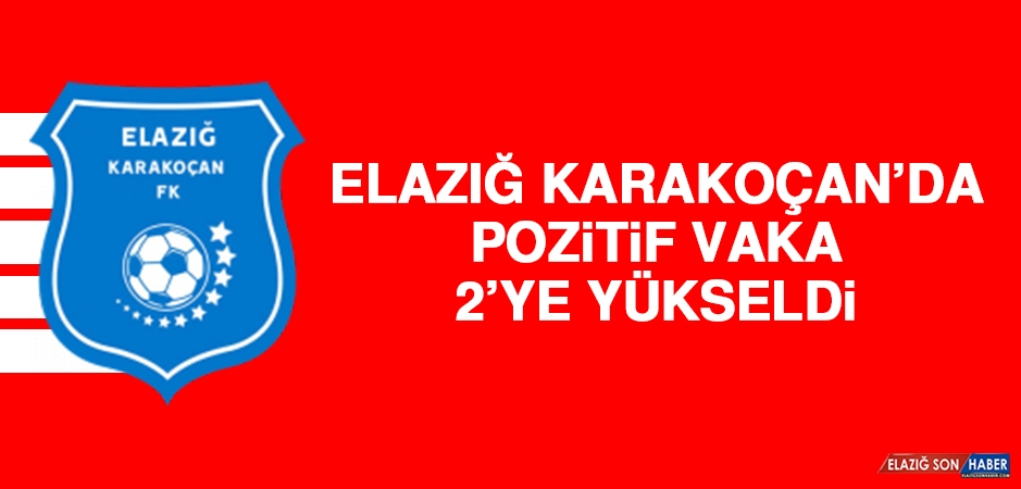 Elazığ Karakoçan'da Pozitif Vaka 2'ye Yükseldi