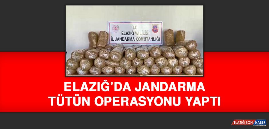 Elazığ'da Jandarma'dan Tütün Operasyonu