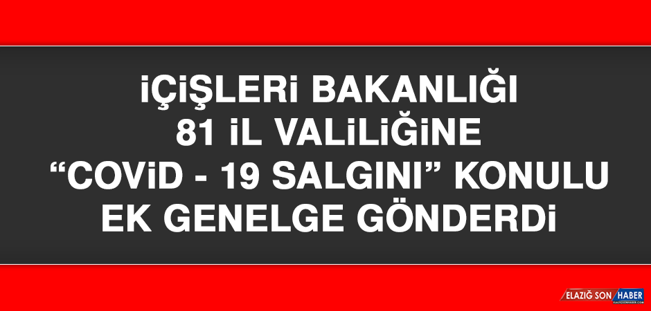"""İÇİŞLERİ BAKANLIĞI 81 İL VALİLİĞİNE """"COVİD-19 SALGINI"""" KONULU EK GENELGE GÖNDERDİ"""