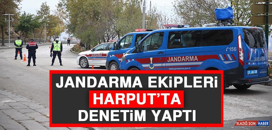 Jandarma Ekipleri Harput'ta Denetim Yaptı