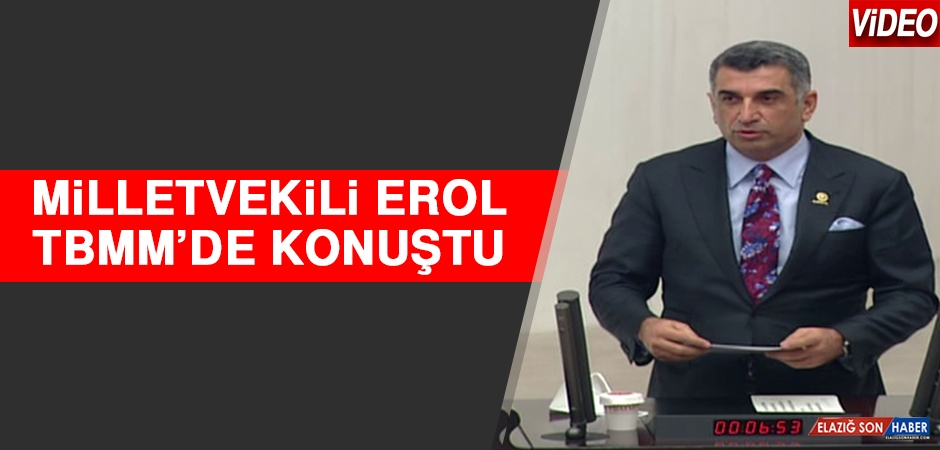 Milletvekili Erol, TBMM'de Konuştu