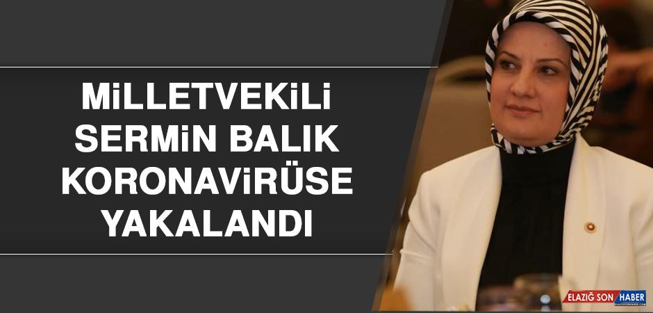 Milletvekili Sermin Balık Koronavirüse Yakalandı