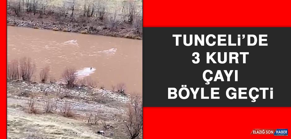 Tunceli'de 3 Kurt Çayı Böyle Geçti