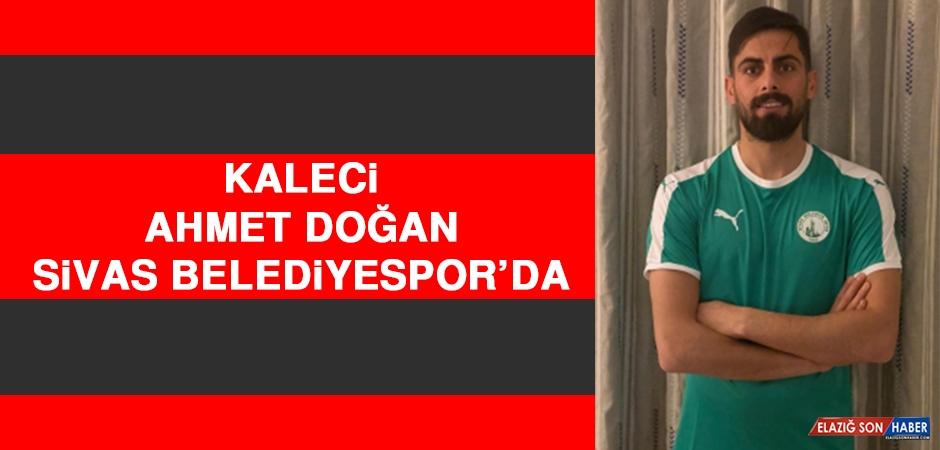 Ahmet Doğan, Sivas Belediyespor'da