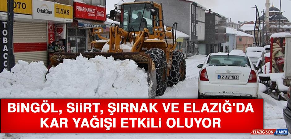 Bingöl, Siirt, Şırnak ve Elazığ'da Kar Yağışı Etkili Oluyor