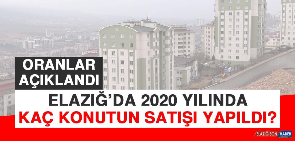 Elazığ'da 2020 Yılında Kaç Konutun Satışı Yapıldı?
