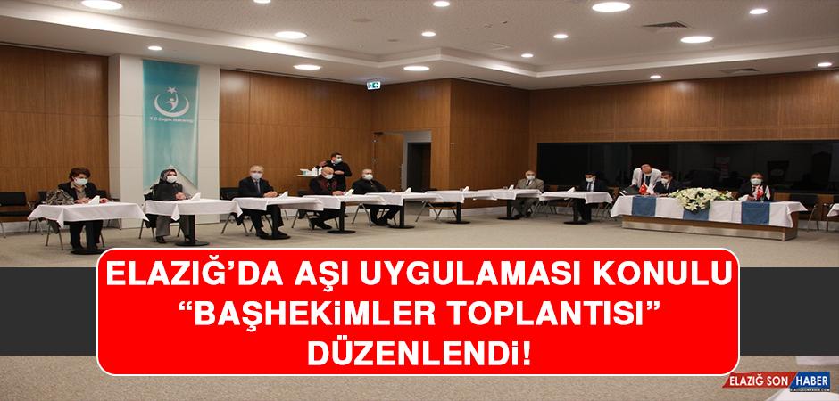 Elazığ'da Aşı Uygulaması Konulu Başhekimler Toplantısı Düzenlendi