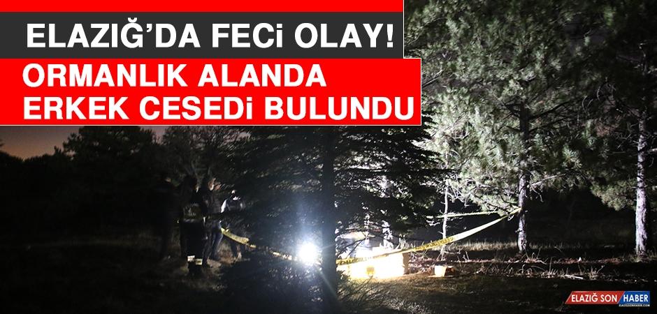 Elazığ'da Feci Olay! Ormanlık Alanda Erkek Cesedi Bulundu