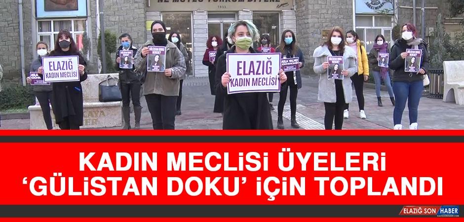 Kadın Meclisi Üyeleri 'Gülistan Doku' İçin Toplandı