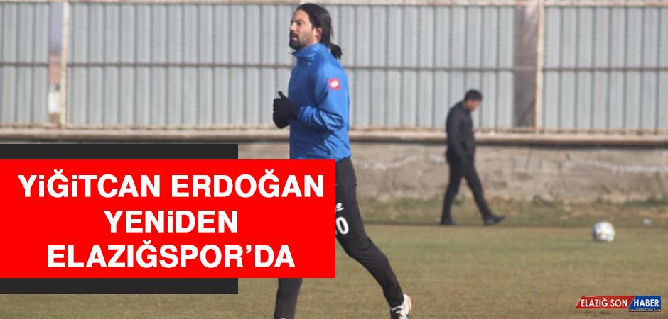 Yiğitcan Erdoğan Yeniden Elazığspor'da