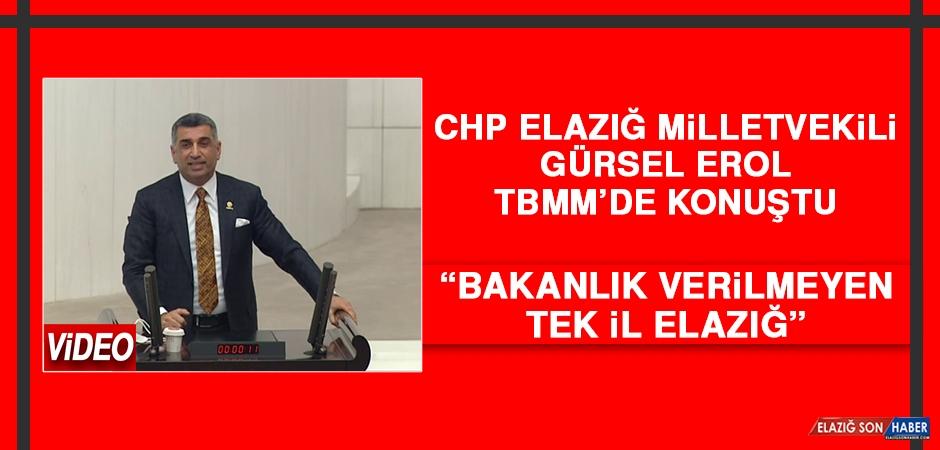 CHP Elazığ Milletvekili Gürsel Erol TBMM'de Konuştu