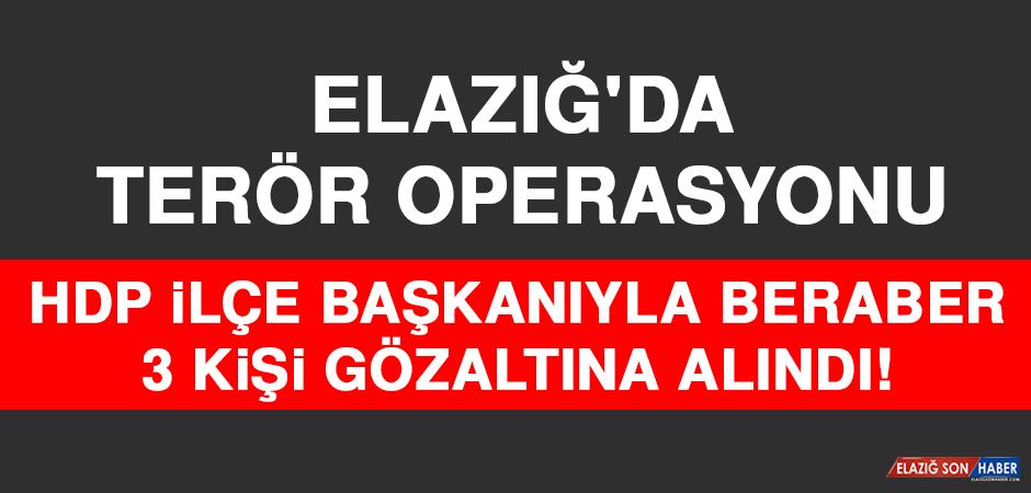 Elazığ'da Terör Operasyonu, 1'i HDP İlçe Başkanı 3 Gözaltı