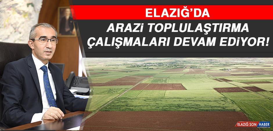 Elazığ'da Arazi Toplulaştırma Çalışmaları Devam Ediyor