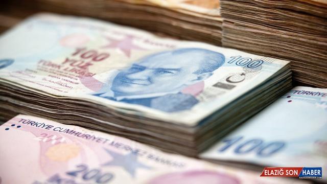 Kalkınma ajanslarının 2021 yılı transfer ödeneği belli oldu