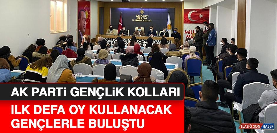 AK Parti'den Yeni Seçmenlere Yönelik Etkinlik