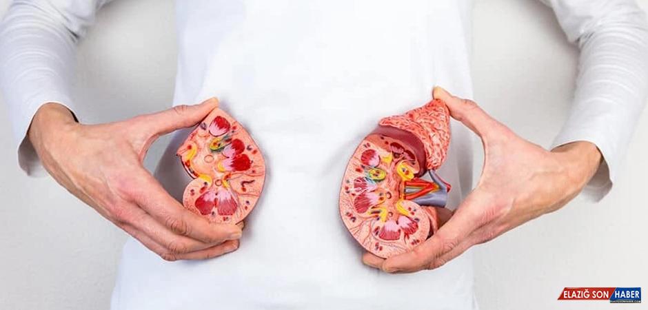 Böbrek Taşlarını Önlemek İçin Beslenme İpuçları