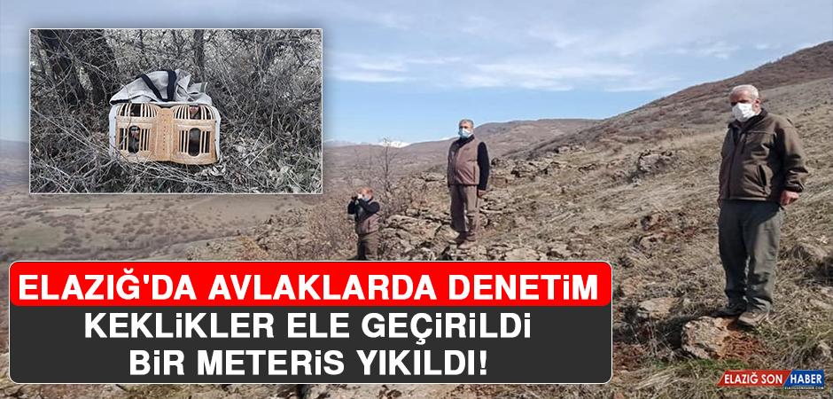 Elazığ'da Keklikler Ele Geçirildi, Bir Meteris Yıkıldı!