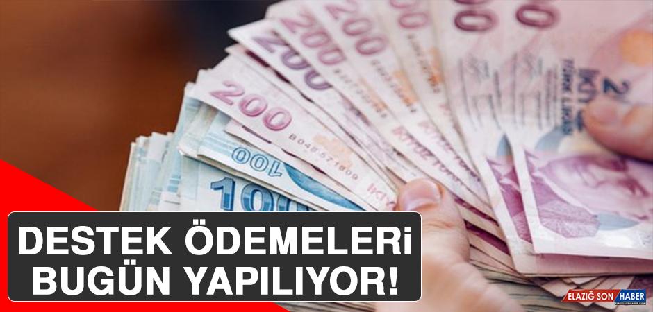 Bakan Bekir Pakdemirli Açıkladı! Destek Ödemeleri Bugün Yapılıyor