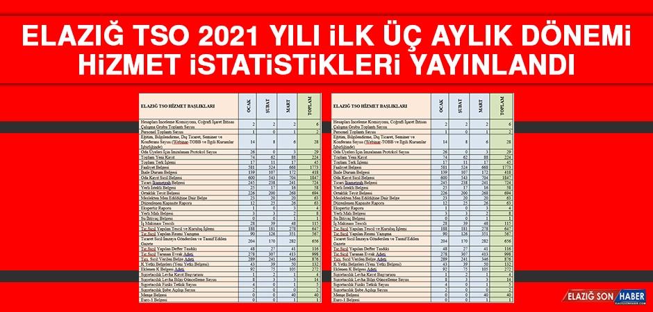 Elazığ TSO 2021 Yılı İlk Üç Aylık Dönemi Hizmet İstatistikleri Yayınlandı