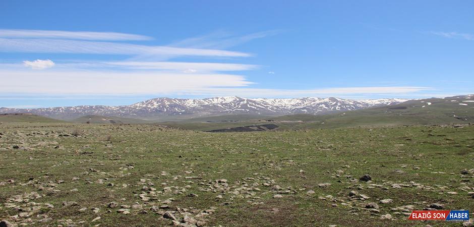 Erzurumlular Rüzgarı Dinmeyen Nene Hatun Kırsalına Türbin Talep Etti