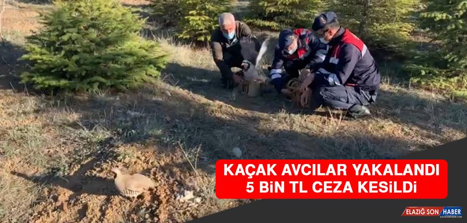 Kaçak Avcılar Yakalandı 5 Bin TL Ceza Kesildi