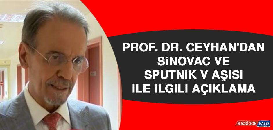 Prof. Ceyhan'dan Sinovac ve Sputnik V aşısı ile ilgili açıklama