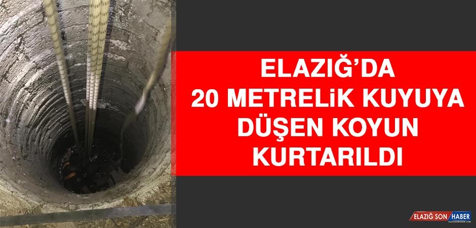 Elazığ'da 20 Metrelik Kuyuya Düşen Koyun Kurtarıldı