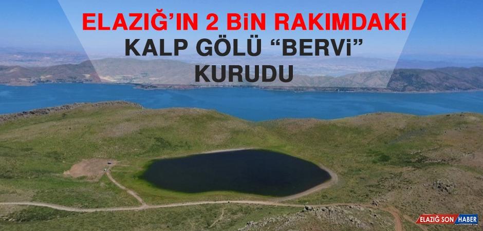 """Elazığ'ın 2 Bin Rakımdaki Kalp Gölü """"Bervi"""" Kurudu"""