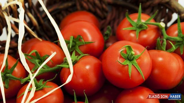 İstanbul'da Nisan'da en çok domatesin fiyatı arttı