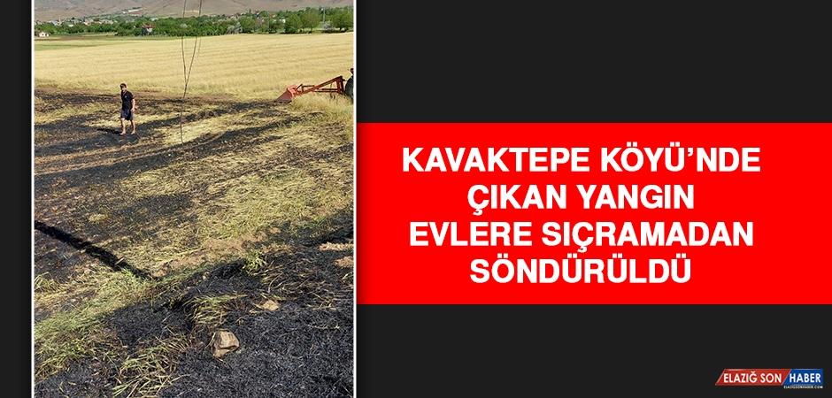 Kavaktepe Köyü'nde Çıkan Yangın Evlere Sıçramadan Söndürüldü