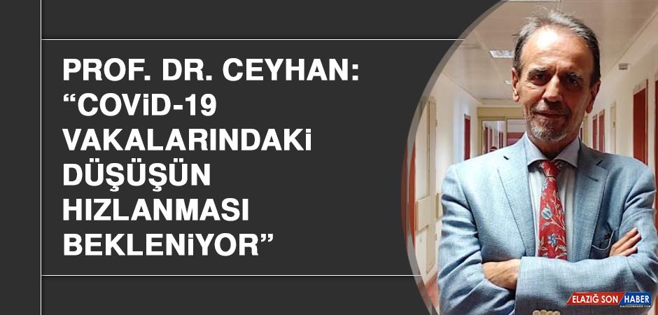 """Prof. Dr. Ceyhan: """"Covid-19 vakalarındaki düşüşün hızlanması bekleniyor"""""""
