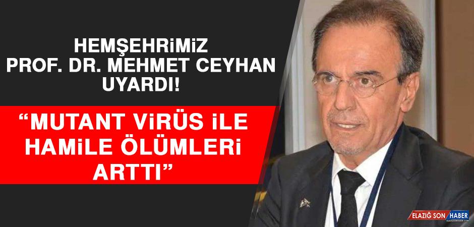 Prof. Dr. Ceyhan: Mutant Virüs İle Hamile Ölümleri Arttı