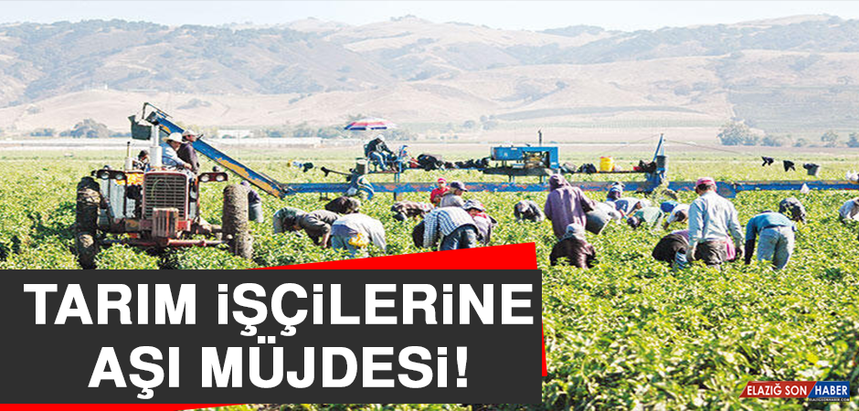 Tarım İşçilerine Aşı Müjdesi!