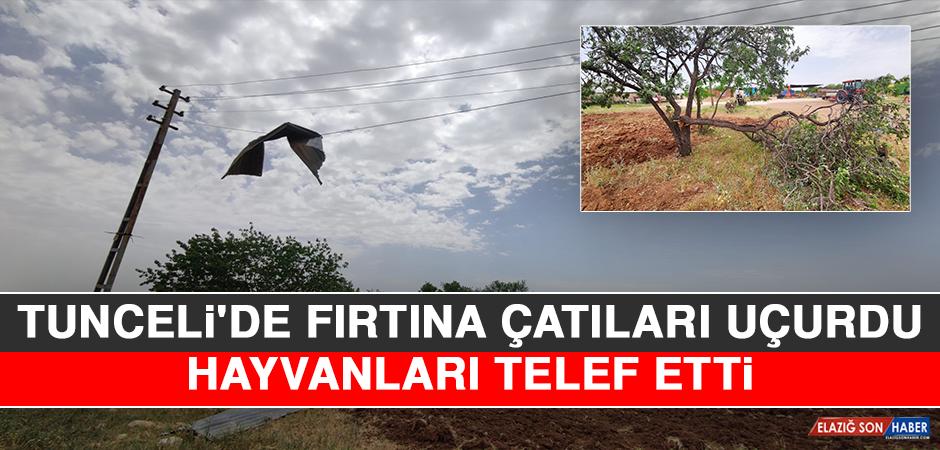 Tunceli'de Fırtına Çatıları Uçurdu, Hayvanları Telef Etti