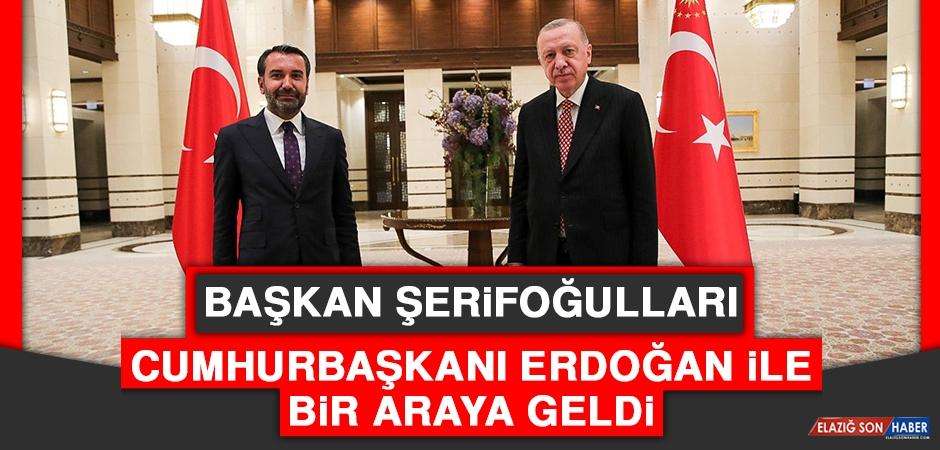 Başkan Şerifoğulları, Cumhurbaşkanı Erdoğan İle Bir Araya Geldi
