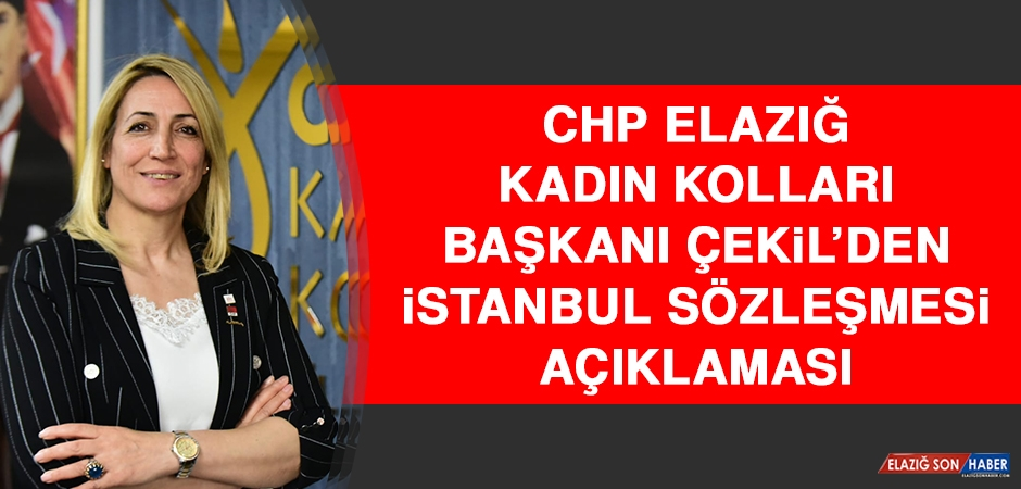 CHP Elazığ Kadın Kolları Başkanı Çekil'den İstanbul Sözleşmesi Açıklaması