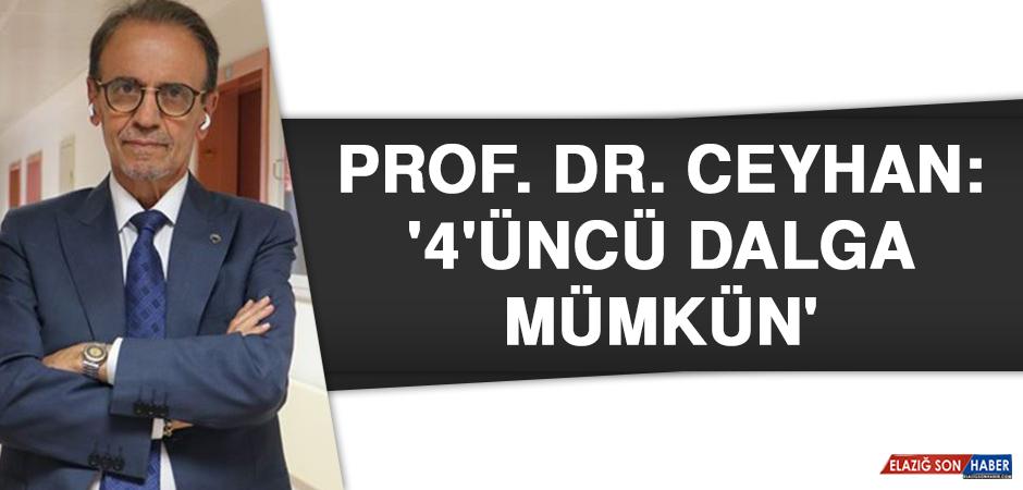 Prof. Dr. Ceyhan: '4'üncü dalga mümkün'