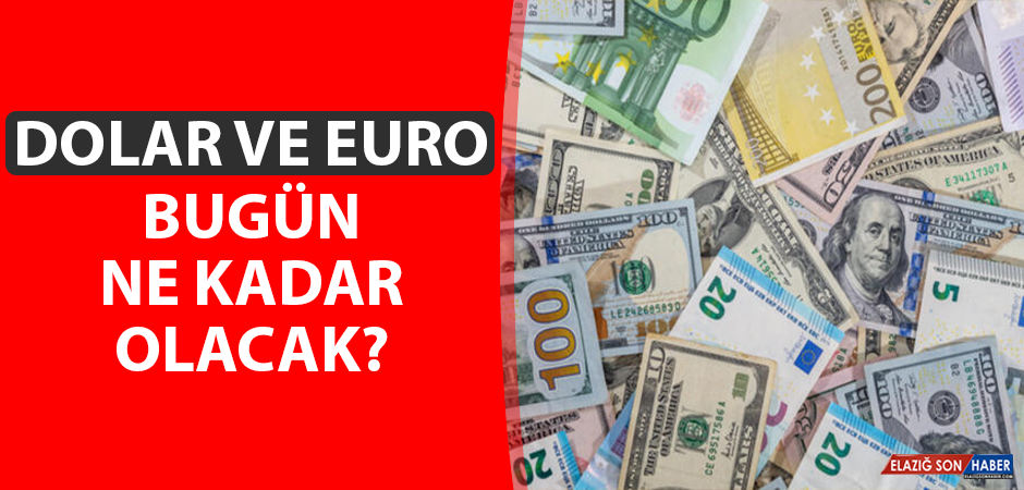 31 Ağustos Dolar ve Euro Kuru
