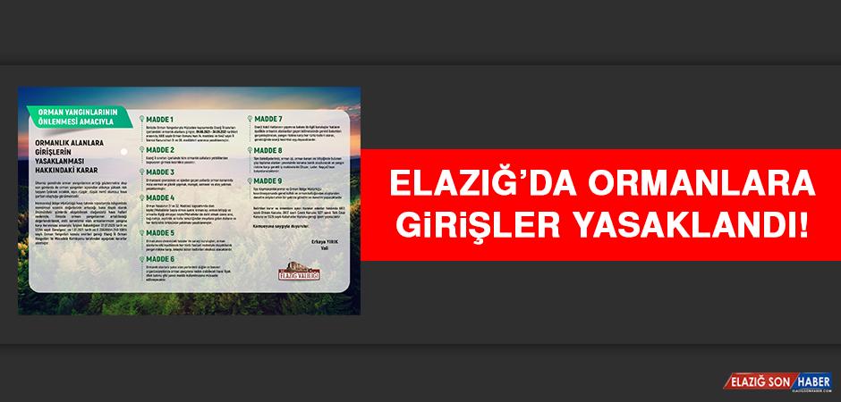 ELAZIĞ'DA ORMANLARA GİRİŞLER YASAKLANDI
