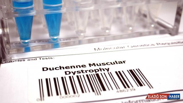 7 Eylül DMD kas hastalığı farkındalık günü